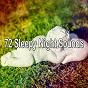 Album 72 sleepy night sounds de Relaxing Music Therapy