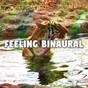 Album Feeling Binaural de Binaural Beats Brainwave Entrainment