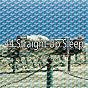 Album 44 straight up sleep de Sleepy Night Music