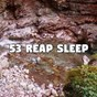 Compilation 53 reap sleep avec All Night Sleeping Songs To Help You Relax