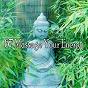 Album 67 massage your energy de Entspannungsmusik