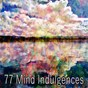 Album 77 mind indulgences de Yoga Music