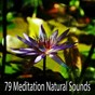 Compilation 79 meditation natural sounds avec Pro Sounds Effects Library