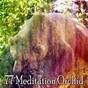 Album 77 meditation orchid de Spa Relaxation & Spa