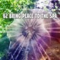 Album 62 bring peace to the spa de Mother Nature Sound FX