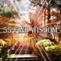 Album 55 find wisdom de White Noise Meditation