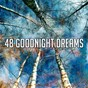 Album 48 goodnight dreams de Bedtime Baby