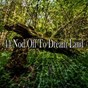 Album 44 nod off to dream land de Ocean Waves for Sleep