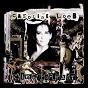 Album Crime parfait de Caroline Loeb