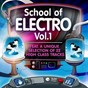 Compilation School of electro, vol.1 (22 high class tracks of musicians graduation) avec Paxi / Andreas Kremer / Al Faris, Freakquencer / Digital Addicted / Max Aschenbrenner...