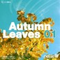 Compilation Nellie's autumn leaves 01 avec Claes Rosen / Something Good / Shipstad, Warren / Peter Johansson / Playton...