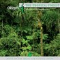 Album Oxygen 4: the tropical forest (music and rainbows) de Philippe Bestion
