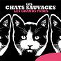 Album Les grands tubes de Les Chats Sauvages