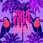 Compilation Hola tech house, vol. 3 avec Michael Epps / Spilled Knight / The Stray Diamond Club / Gordon Garcia / Alyssa Jones...