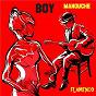 Album Manouche flamenco de Boy