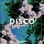Compilation Disco electronica, vol. 29 avec Andreew / Mirco Caruso / Saeed Younan, Electronic Youth / Santé / Latmun...