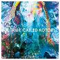 Compilation A tribe called kotori avec Nicola Cruz / Oliver Koletzki / Nu / Martin Gretschmann / Acid Pauli...