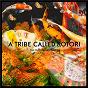 Compilation A tribe called kotori - chapter 2 avec Canu, Nu, Alejandro Castelli / Christos Fourkis / Kermesse / Alejandro Castelli, Rolf Laumer / Alejandro Castelli...