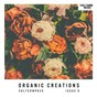 Compilation Organic creations issue 9 avec Boris / Samu.L / Junior Gee / Richard Cleber / Stefano Noferini, Danniel Selfmade...