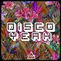 Compilation Disco yeah!, vol. 24 avec Jamie Lewis / Selva Basaran / 84bit / Julien Scalzo, Ron Carroll / Towsers...