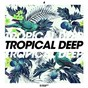 Compilation Tropical deep, vol. 4 avec Lebérrow / Bolier / Nipri, Dirty Rush, Gregor Es / DJ Polique / Audax, Adriano Pagani, Dimy Soler...