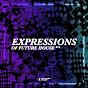 Compilation Expressions of future house, vol. 14 avec Hanna Hansen / Faul & Wad, Avalanche City / Audax, Shawnee Taylor / Mosimann / Roger Horton...
