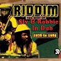 Album Riddim: the best of sly & robbie in dub 1978-1985 de Sly & Robbie
