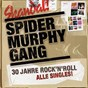 Album 30 jahre rock'n'roll de Spider Murphy Gang