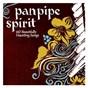 Compilation Panpipe spirit avec The New World Orchestra / Andy Findon / Joaquim Sanchez & Pipes of the Enamorates