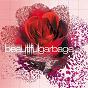 Album Beautiful Garbage de Garbage