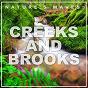 Album Nature's waves (creeks & brooks) de Nature Sounds