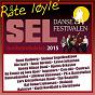 Compilation Dansefestivalen sel, gudbrandsdalen 2015 - råte løyle' avec Christiania / Rune Rudberg / Steinar Engelbrektson Band / Ole Ivars / Anne Nørdsti...