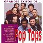 Album Los grandes exitos de pop tops de Pop Tops