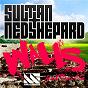 Album Walls (feat. Quilla) de Sultan + Shepard